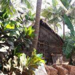 Finalmente Gokarna – ritorno in Karnataka