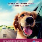 Animali domestici: dove lasciare il cane o il gatto quando si parte