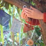 Plants Play – La Musica delle Piante